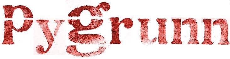 Logo PyGrunn (excl. men 1024)
